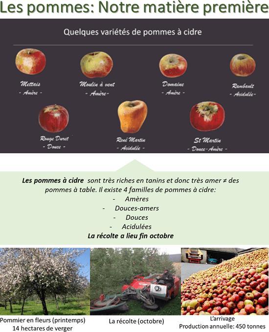 Les pommes: Notre matière première